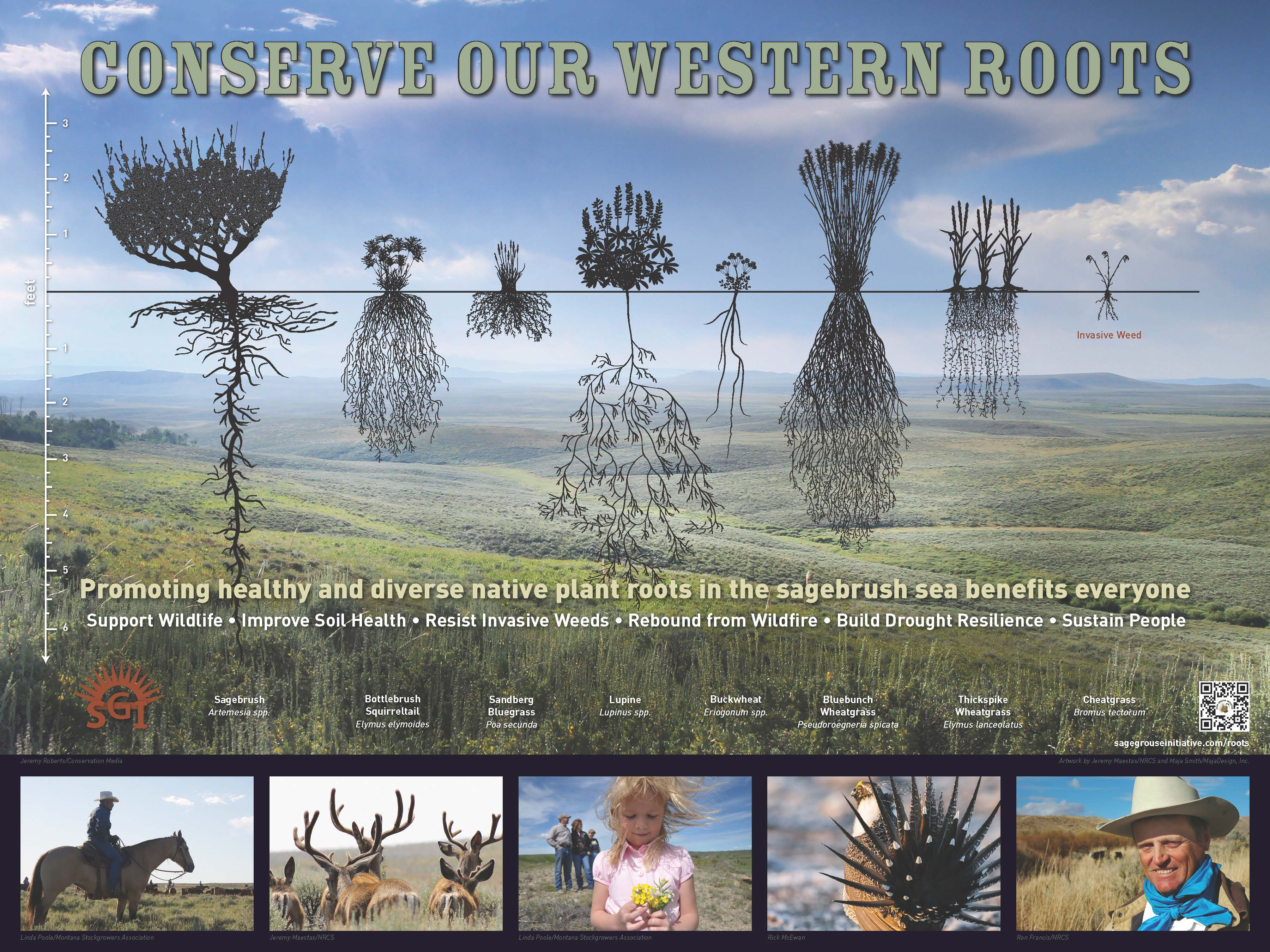 SGI-Conserve Our Western Roots poster