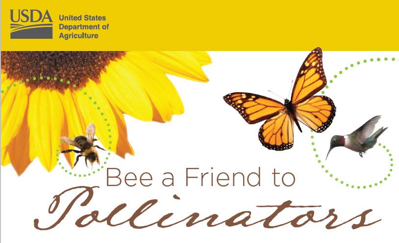 Bee a Friend to Pollinators brochure